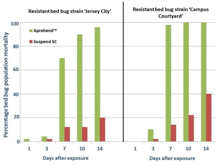 Aprehend® combats resistant bed bugs